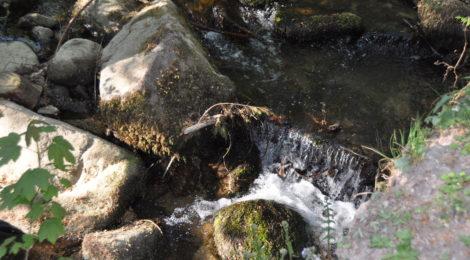 jordbunden tantra